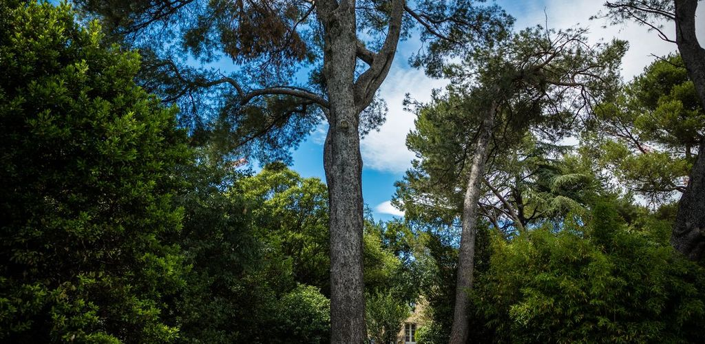 Le clos de l'Herminier-Montpellier_1 2017 - Hervé Leclair_Asphéries - Sud de France Développement