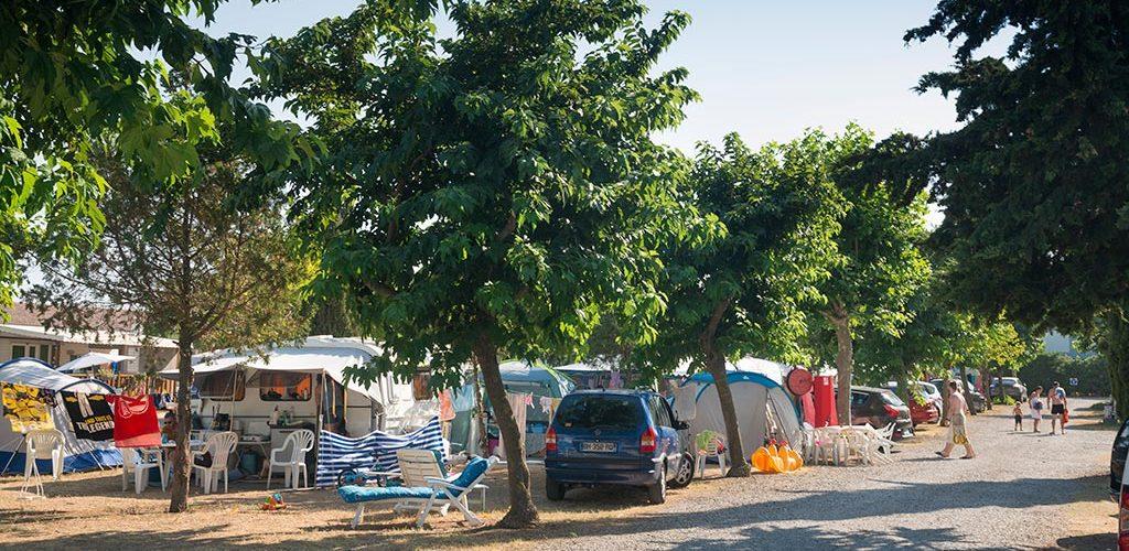 Camping Le Pin Parasol à Saint-Thibéry Le Pin Parasol