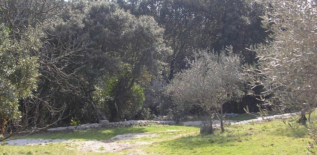 Terrain camping damais