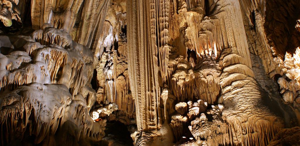 Lecture de vignes 1 Grotte des Demoiselles