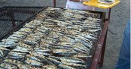 SARDINADE (WHOLE, GRILLED SARDINES) IN GRAU D'AGDE