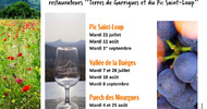 VINS & SAVEURS DU PIC : PIC SAINT-LOUP