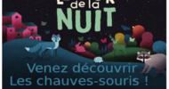 LA NUIT DE LA CHAUVE SOURIS