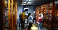 VISITE GUIDÉE DES COLLECTIONS ET DES EXPOSITIONS TEMPORAIRES AU MUSÉE MÉDARD DE LUNEL