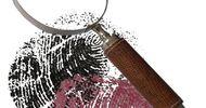 FRISSONS À PAULHAN : AVENTURES, SCIENCES ET SCÈNES DE CRIMES