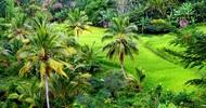 LES ECHOS DURABLES : L'AGROECOLOGIE OU L'ART DE CULTIVER UN ECOSYSTEME « PRODUCTIF »