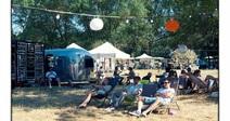 FESTIVAL WILD SUMMER