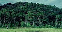 LES ECHOS DE RESTINCLIERES - CHANGEMENT CLIMATIQUE ET AGRICULTURE : CONCILIER ATTENUATION ET ADAPTATION