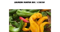 MARCHÉ DE PRODUCTEURS SAINT BAUZILLE DE PUTOIS