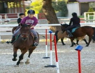 Saint Georges equitation 1 Mme CREPINGE