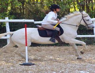 Saint Georges equitation 2 Mme CREPINGE