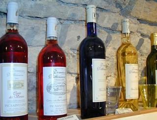 Fraisse vin 3 © S. Lhostis. OTGPSL