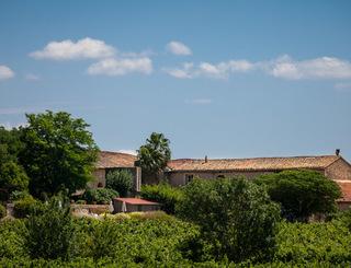 Domaine Savary de Beauregard-Montagnac_12