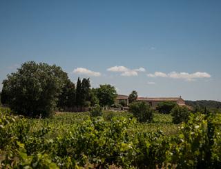 Domaine Savary de Beauregard-Montagnac_11