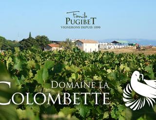 Colombette1