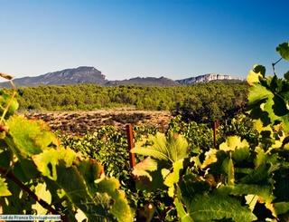 3 Sud de France Développement