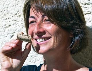 19 Sud de France Développement
