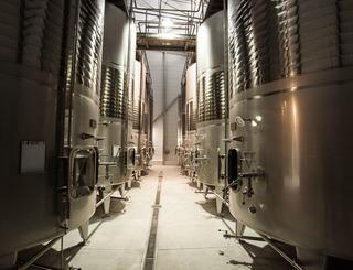 Les vignobles de Montagnac-Montagnac_13 Sud de France Développement