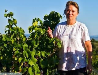 ISABELLE COUSTAL Sud de France Développement