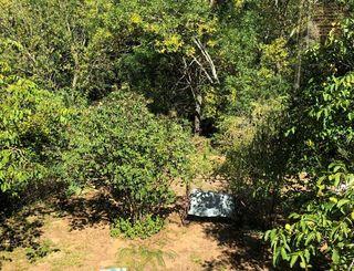 Gîte Le Refuge de Nebuzon - Jardin privé arboré Le Refuge de Nebuzon