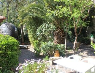 Hôtel Martinez Balaruc-les-Bains Jardin