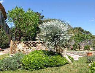 chateau de siran : vue sur le jardin ©chateau de siran