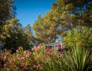 Camping résidentiel La pinède-Castelnau de Guers_14 Sud de France Développement