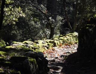 Rando Gorges de Colombieres - Gilles Delerue 11 Gilles Delerue ADT34