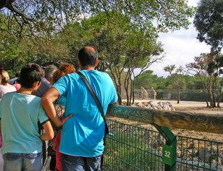 zoomontpellier-marieh-082014-(1) Office de Tourisme de Montpellier