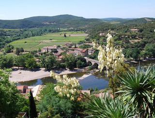 PCU - Jardin Méditérranéen - Sud de France - Vue du jardin 1.jpg Ch.PIALOT
