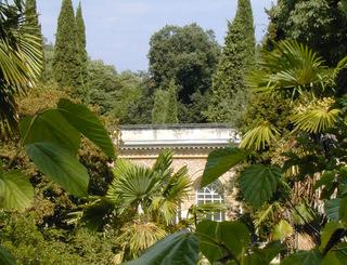Jardin-des-Plantes-©-OTM-FBinder © 2010 - Françpoise Binder – Office de tourisme de Montpellier