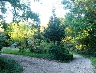 jardindebezombes (4) jardin de bezombes
