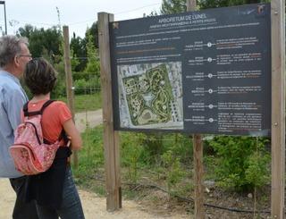Arboretum.6 Ville de Lunel