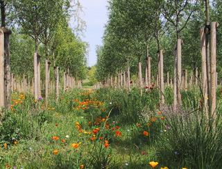 Parc-Georges-Charpak2_michel-bonnet Ville de Montpellier - Michel Bonnet
