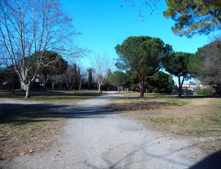 Parc montcalm montpellier - Office de tourisme de montpellier ...
