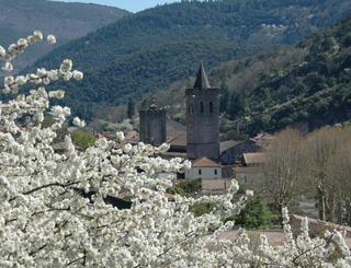 cathédrale St Pons CC du St-Ponais