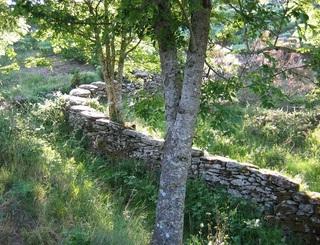 Muret de pierres ©N.Nion Maison Départementale de l'Environnement