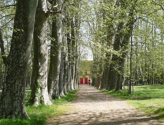 parc_du_chateau_des_eveques AM.M