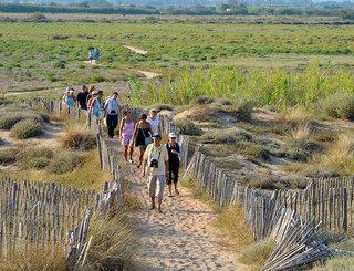 Les Orpellières-les ganivelles aident a reconstituer les dunes- JP Degas Jean-Pierre Degas