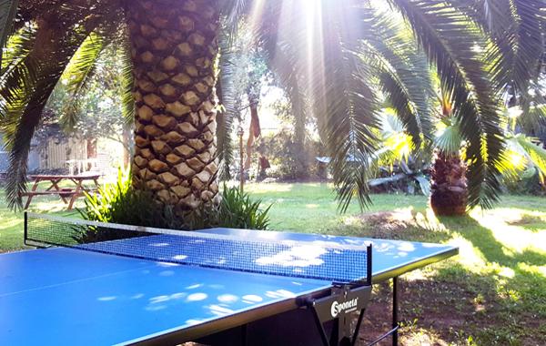 Hôtel le Patriarche** à Agde - Jardin Hôtel le Patriarche