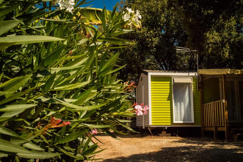 Camping Domaine de Gajan-Boisseron_19 Sud de France Développement