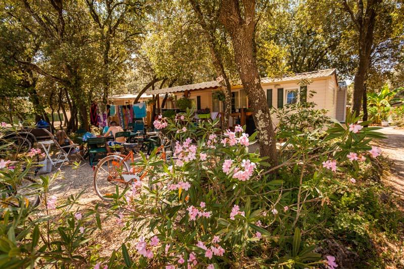Camping Domaine de Gajan-Boisseron_20 Sud de France Développement