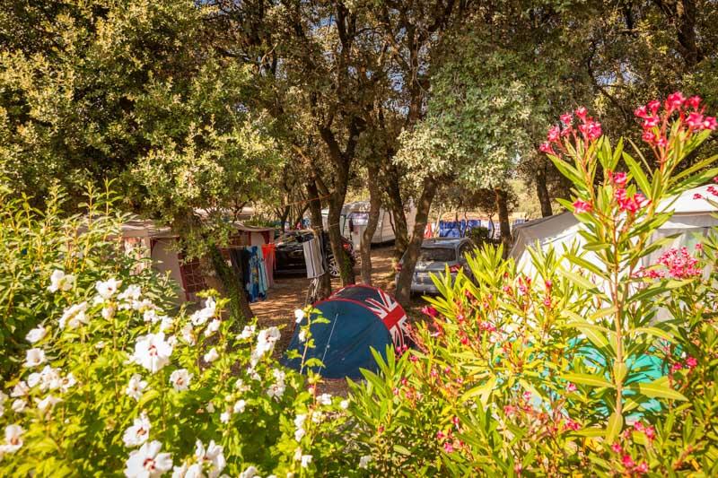 Camping Domaine de Gajan-Boisseron_4 Sud de France Développement