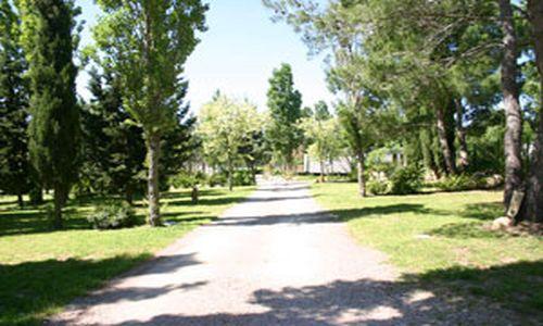 HPALAR0340000619 - chemin_camping_botanic © camping_botanic