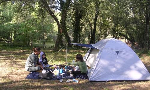 Camping nature damais