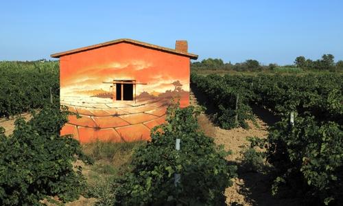 Vignobles et jardins_3 OT Béziers