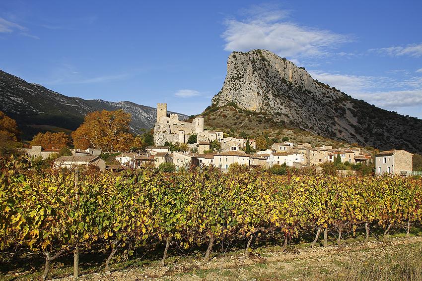 Lecture de vignes 3 Jacques Debru