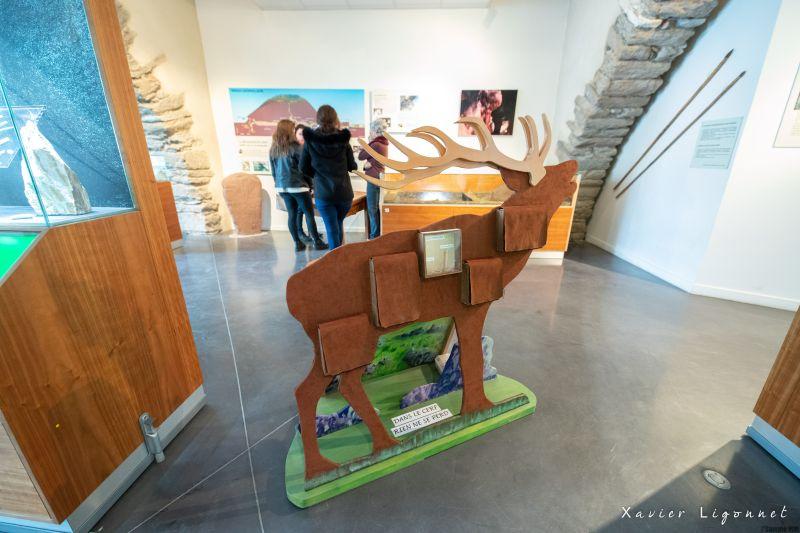 Musee_Saint-Pons3_X-LIGONNET OT Minervois Caroux - X Ligonnet