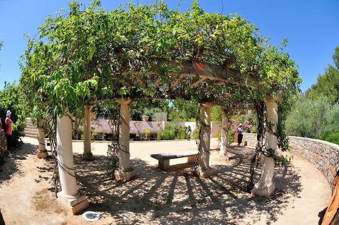 Jardin antique mediterraneen balaruc les bains - Office de tourisme balaruc les bains ...