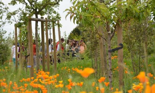 Arboretum.4 Ville de Lunel